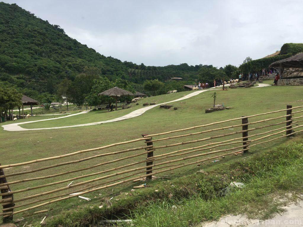 スワンラマイの牧場