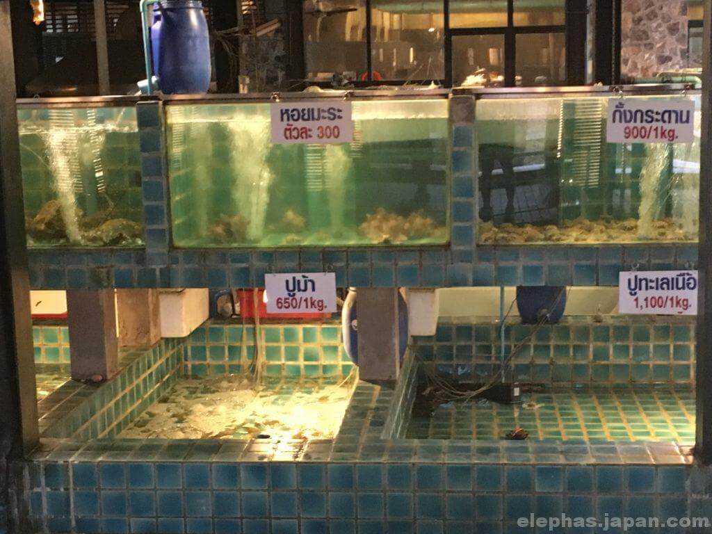 タイのシーフードレストランムンアロイの水槽