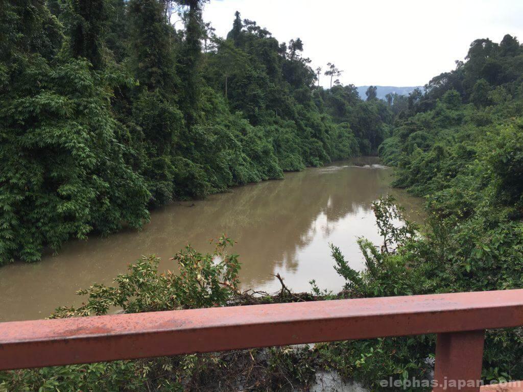 カオヤイ国立公園の橋