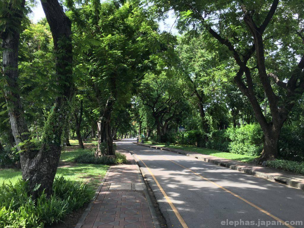在タイ日本大使館そばのルンピニー公園2