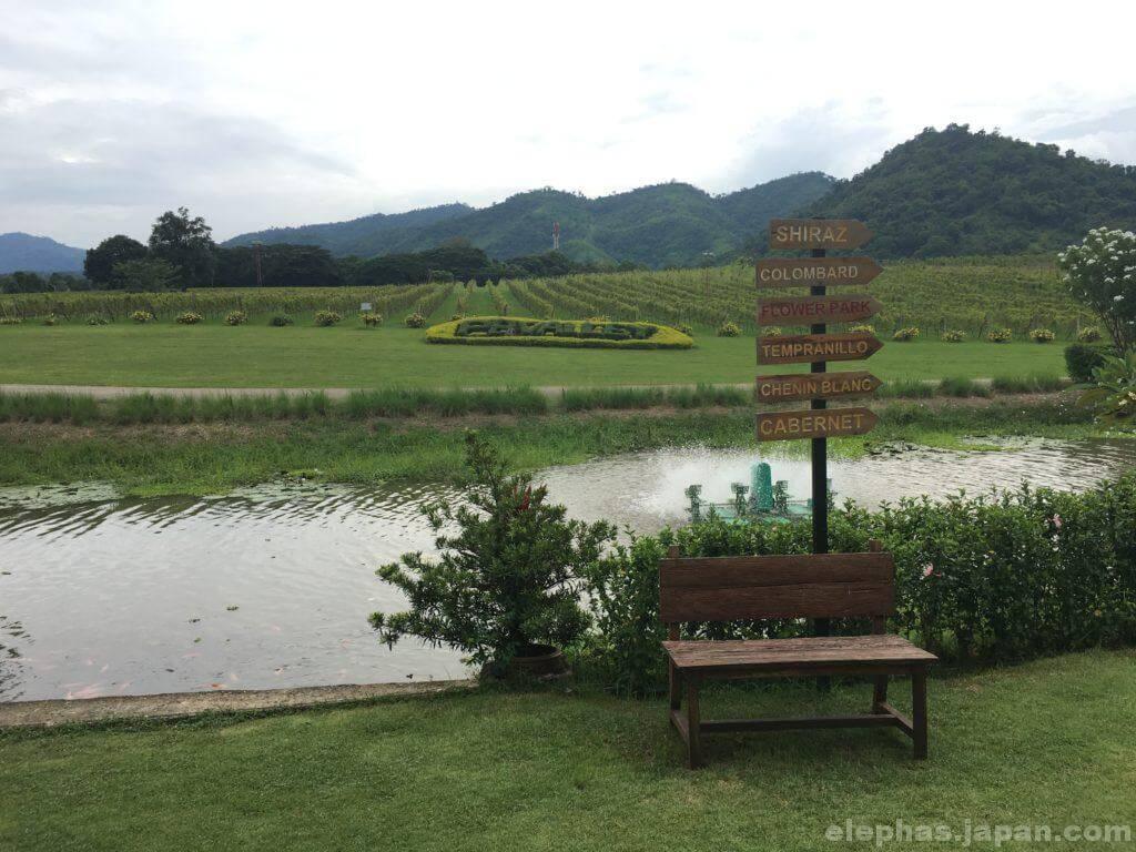 PBバレーカオヤイワイナリーの風景