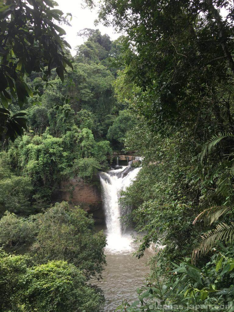 カオヤイ国立公園の林道2