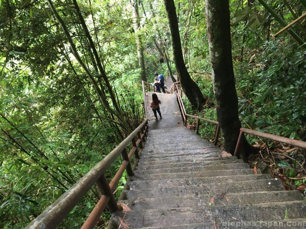 カオヤイ国立公園の階段