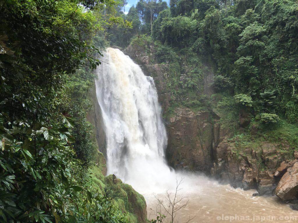 カオヤイ国立公園の滝