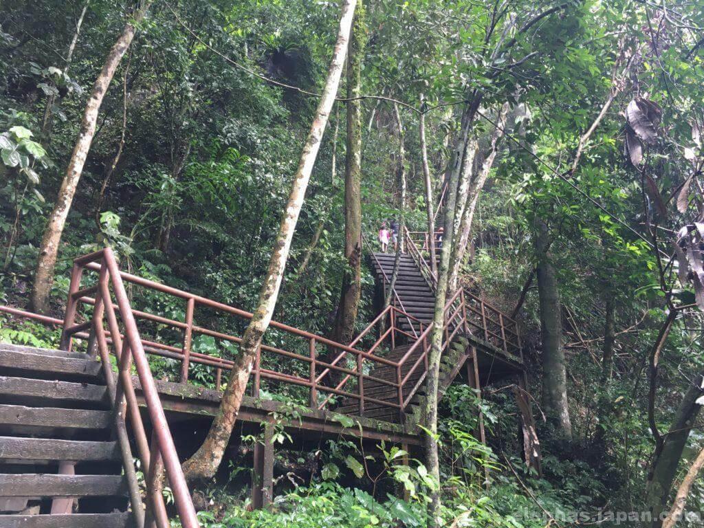 カオヤイ国立公園の階段2