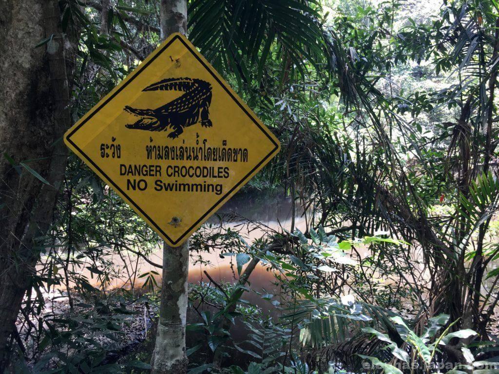 カオヤイ国立公園のトレッキングコース4